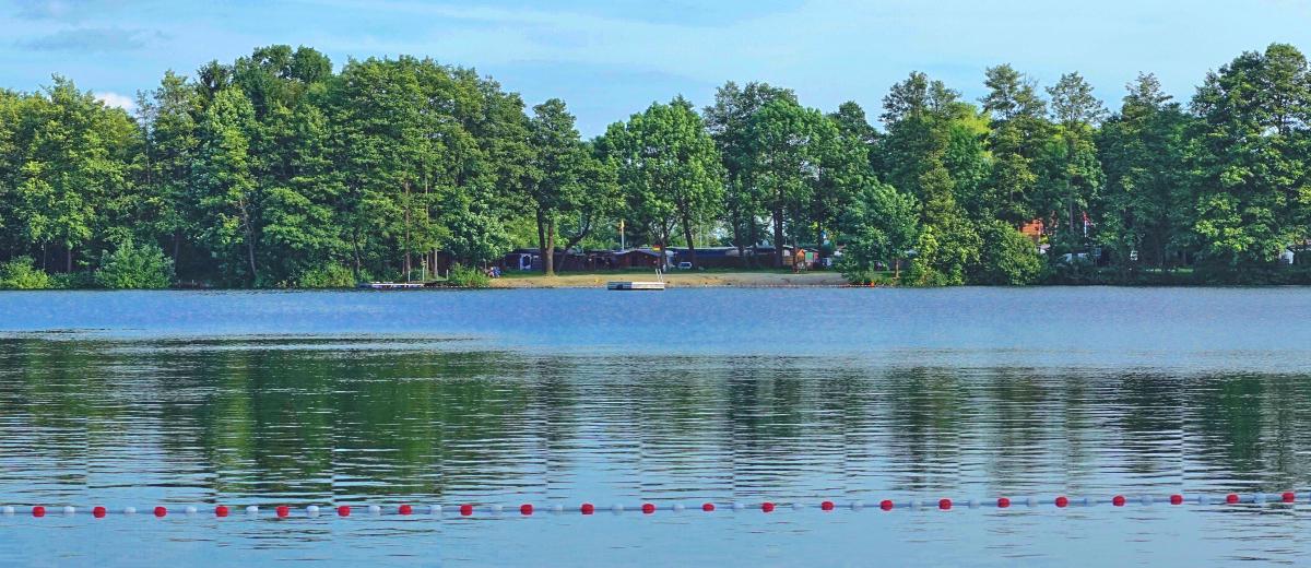 Steller See